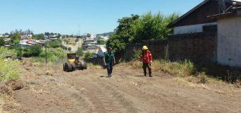 Conaf construye 10 kms de cortafuegos alrededor de la comuna lajina