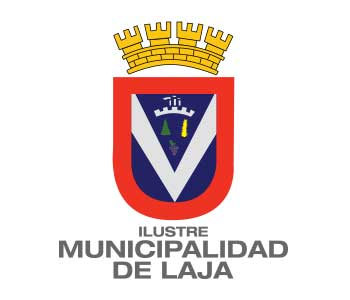 REMATE DE VEHÍCULOS MUNICIPALES