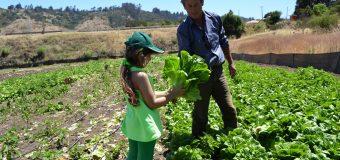 Convocatoria 2017 Proyectos de Valorización del  Patrimonio Agrario, Agroalimentario y Forestal