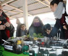 """Primera Feria Comunal del Trueque, """"Todos a reutilizar, Laja a Cuidar""""."""