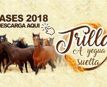 Bases para postular a stand y cocinerías Trilla a Yegua Suelta 2018