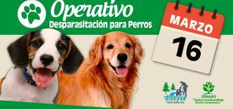 16 DE MARZO: OPERATIVO DE DESPARASITACIÓN PARA PERROS
