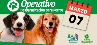 Nuevo Operativo de Desparasitación para perros