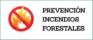 Municipio, Conaf y vecinos trabajan en la prevención de incendios forestales