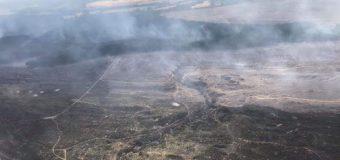 Incendio Forestal consumió cerca de 800 hectáreas