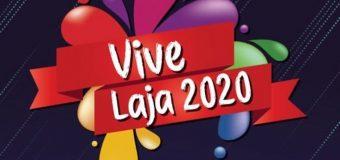 Formulario de postulación para comerciantes Vive Laja 2020