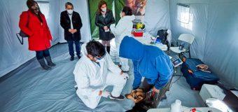 Subdere lanza Programa Veterinario en tu Municipio en Laja