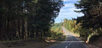 Municipio lajino dispondrá de transporte en sector rural