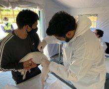 Exitoso operativo para perros y gatos se llevó a cabo en Altos del Laja