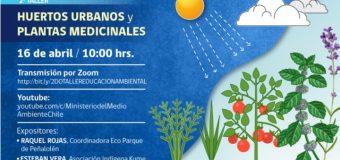 Taller de Huertos Urbanos y Plantas Medicinales